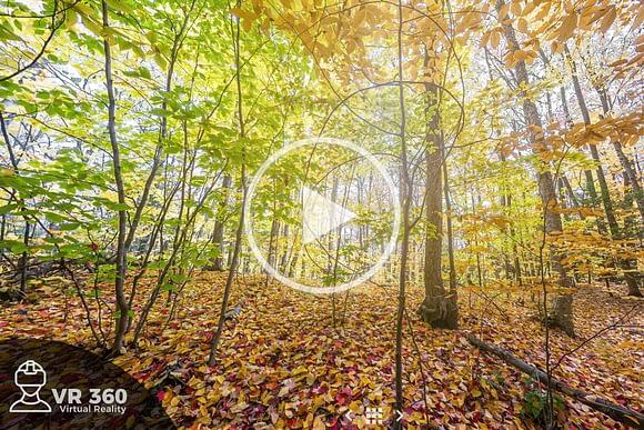 Cómo hacer fotos 360 interactivas