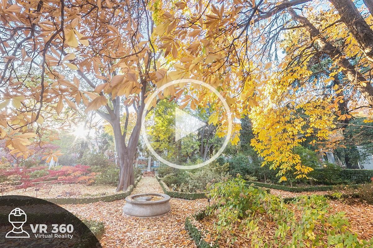 Otoño en el Real Jardín Botánico